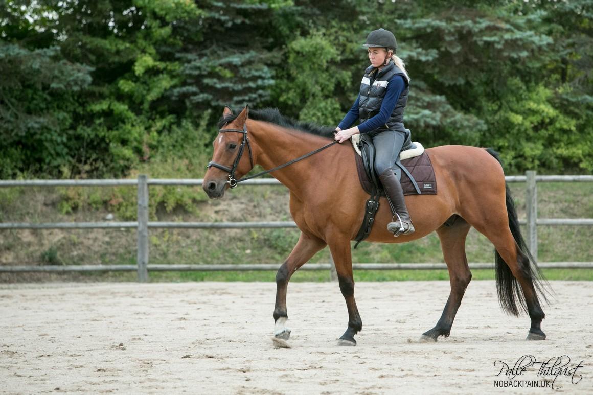 Her ses Noller en af de første gange han rides, uden longe. Han har en rimelig stærk overlinje, men man kan godt se hvordan ryggen giver efter for vægten af en rytter.
