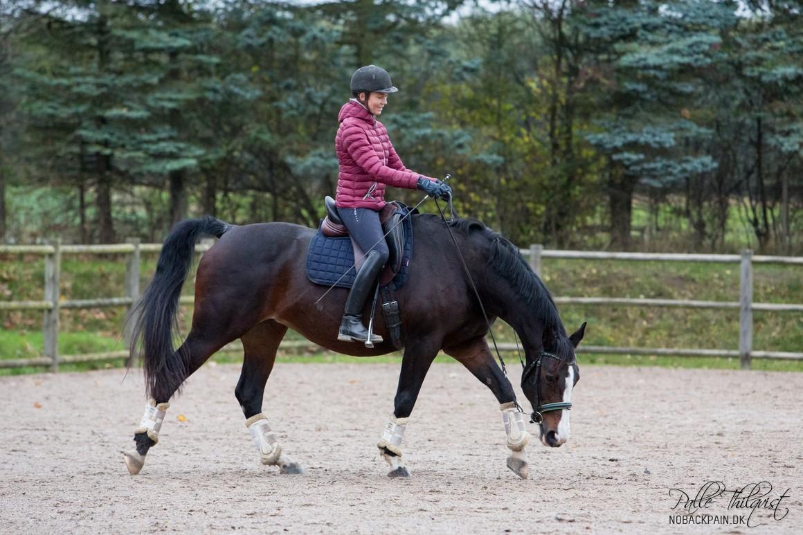 Man skal øve sig i at sidde på en måde, så man kan hjælpe hesten, i stedet for at komme til at modarbejde den.