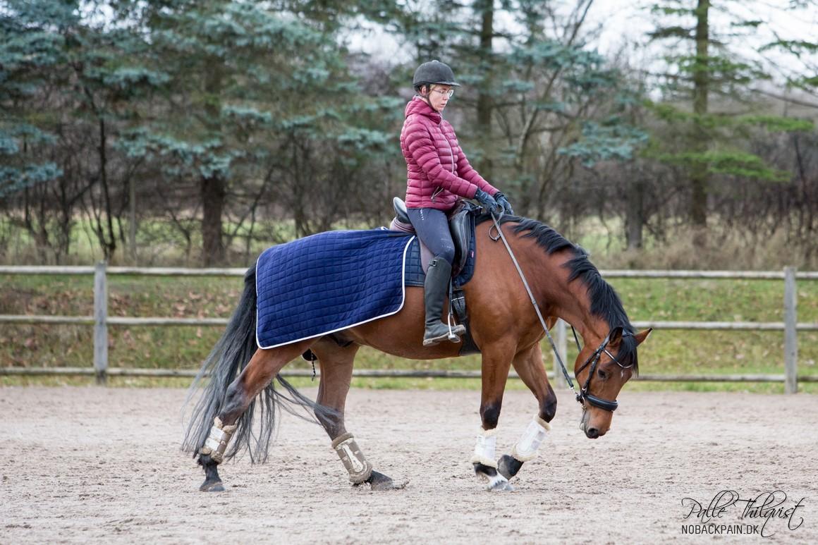 Noller er ikke den nemmeste af hestene, men han udvikler sig alligevel rigtig fint.