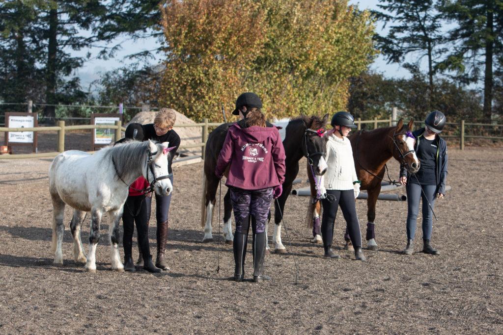 Det ene hold af de dygtige ponyer og børn fra Klimagården