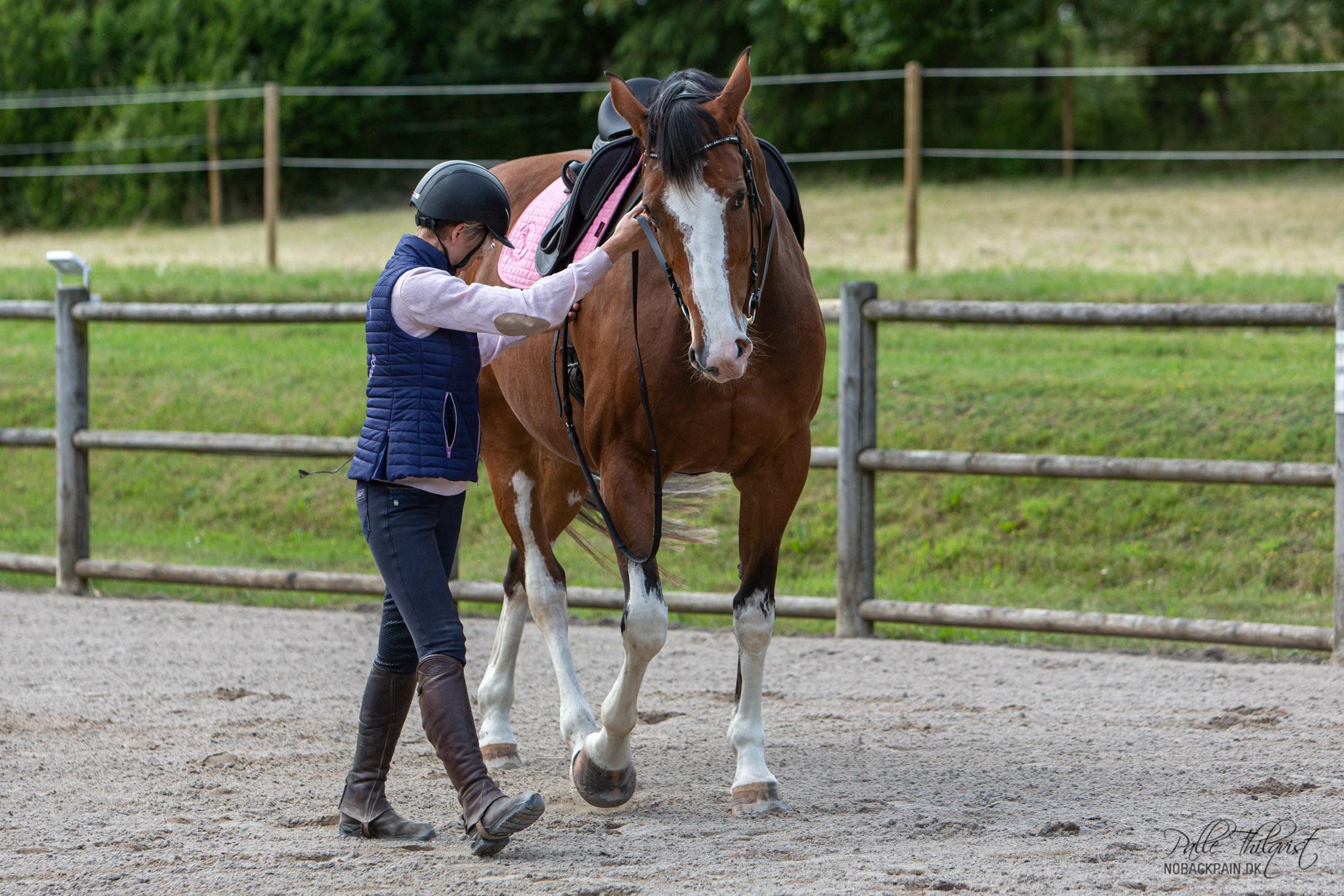 Hvis hesten, når den strækker sig, begynder at skubbe med skulderen, stiller sig ud af volten, forbøjer sig ind i volten eller skyder bagparten ind i volten, så løfter jeg den indvendige hånd. Jeg fører hesten ud af strækket og retter den op og lader den derefter strække sig igen. Det nytter ikke noget at hesten strækker sig hvis hele overlinjen former sig som et S.