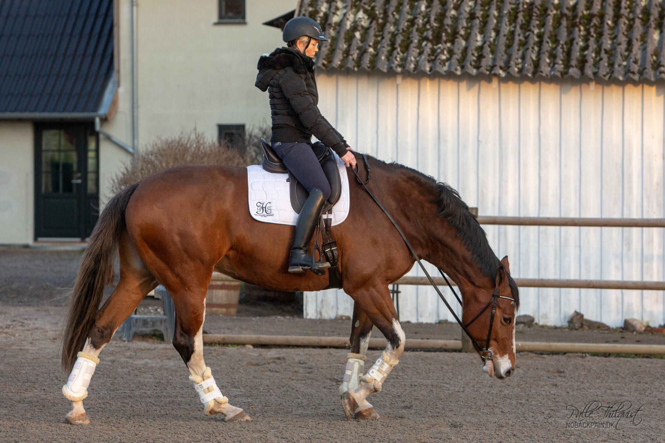 Det er nogle pokkers lange tøjler man sidder med, hvis hesten pludselig bryder ud af et stræk som det her.