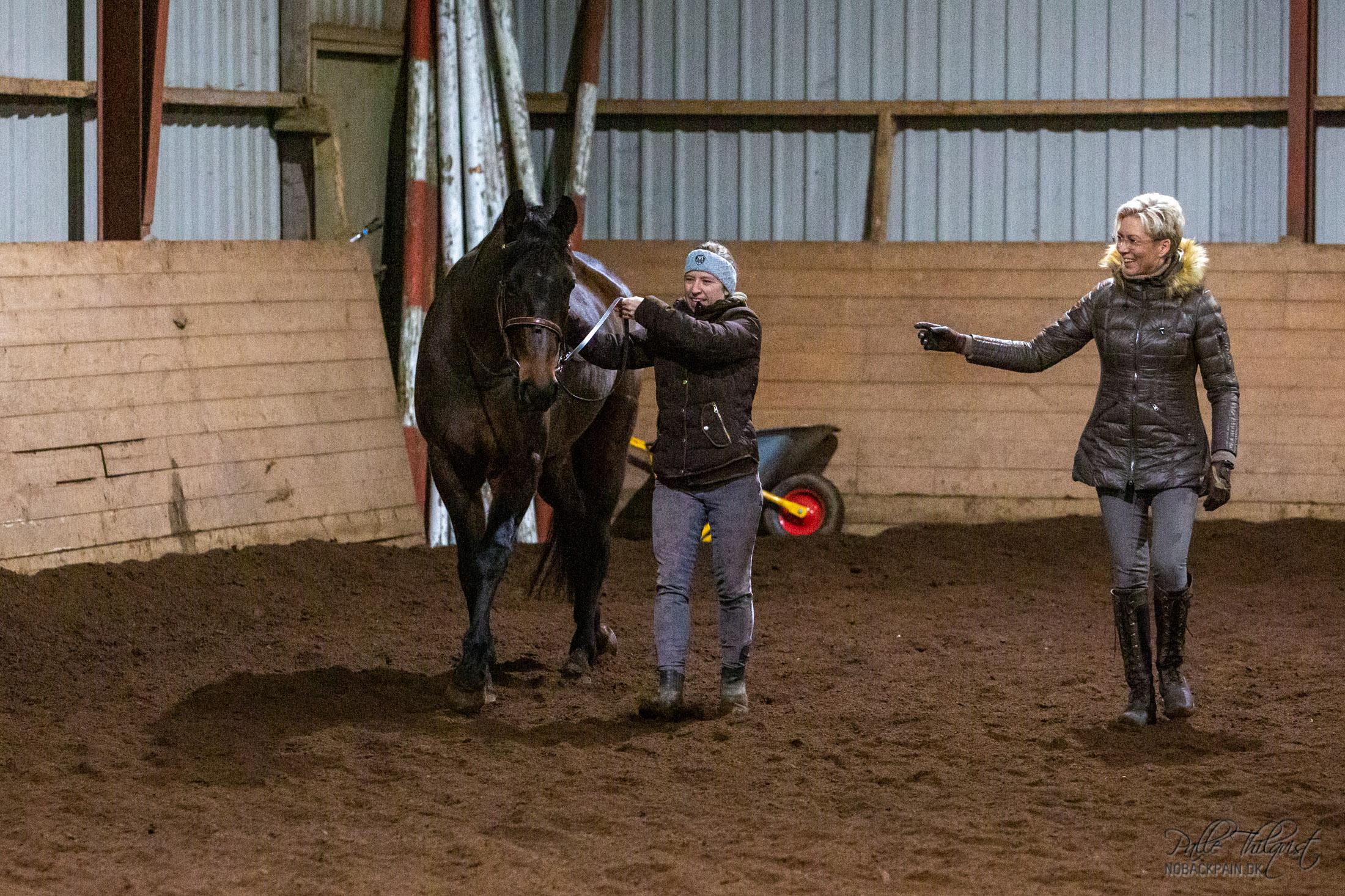 Hvis man har det sjovt når man træner, så smitter det oftest positivt af på hesten