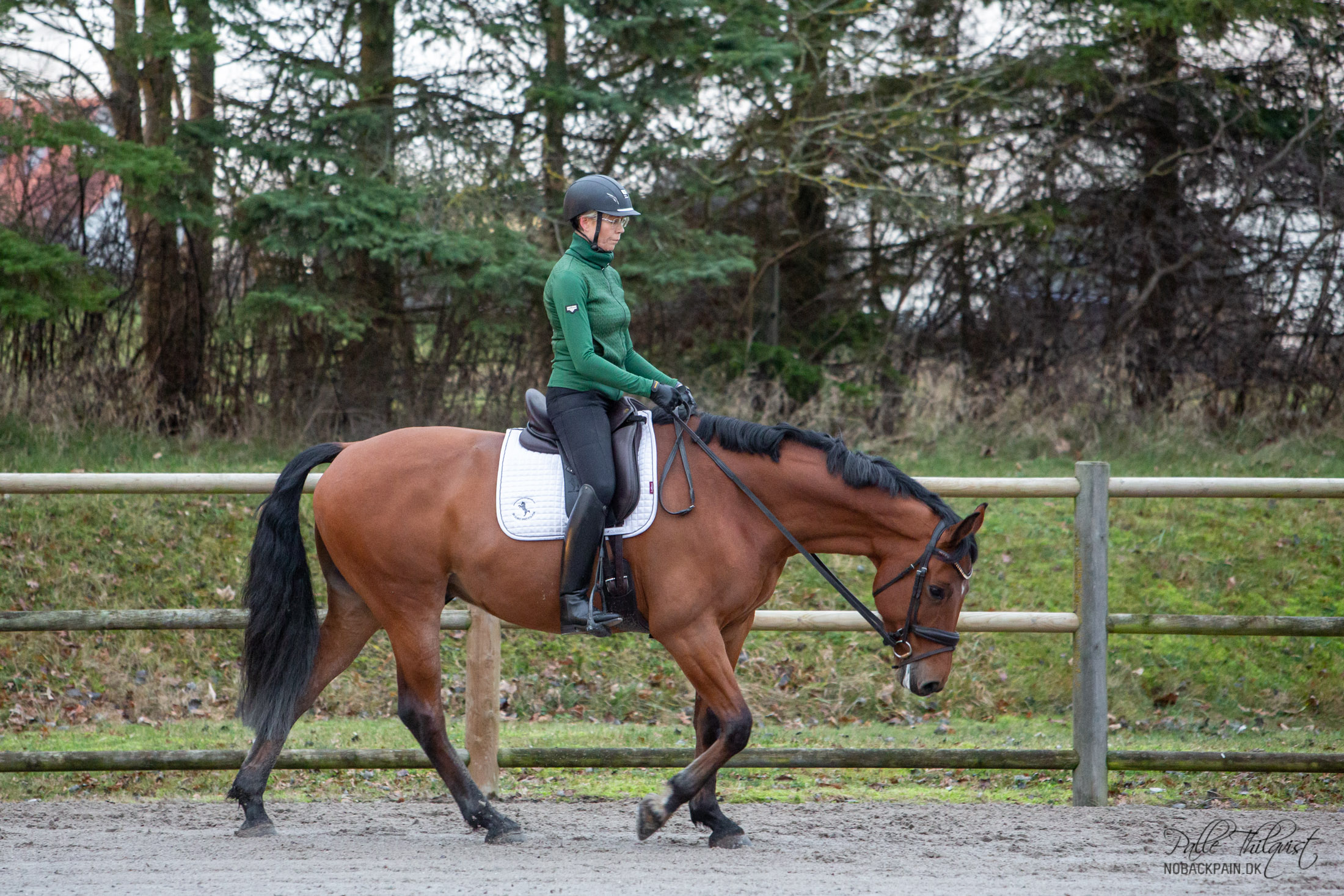 Jeg øver mig i at have hele mit ben liggende tæt omkring hesten uden at klemme.