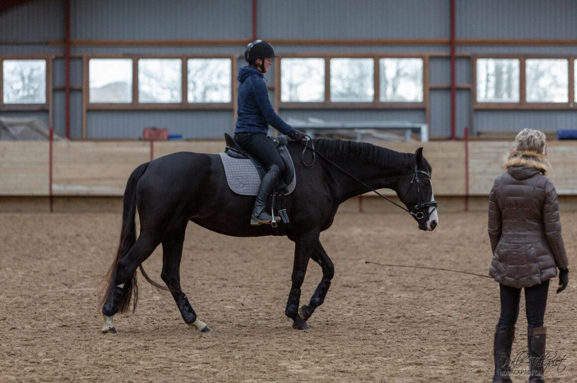 Hesten løsgøres ikke ved at man bøjer den fra side til side.