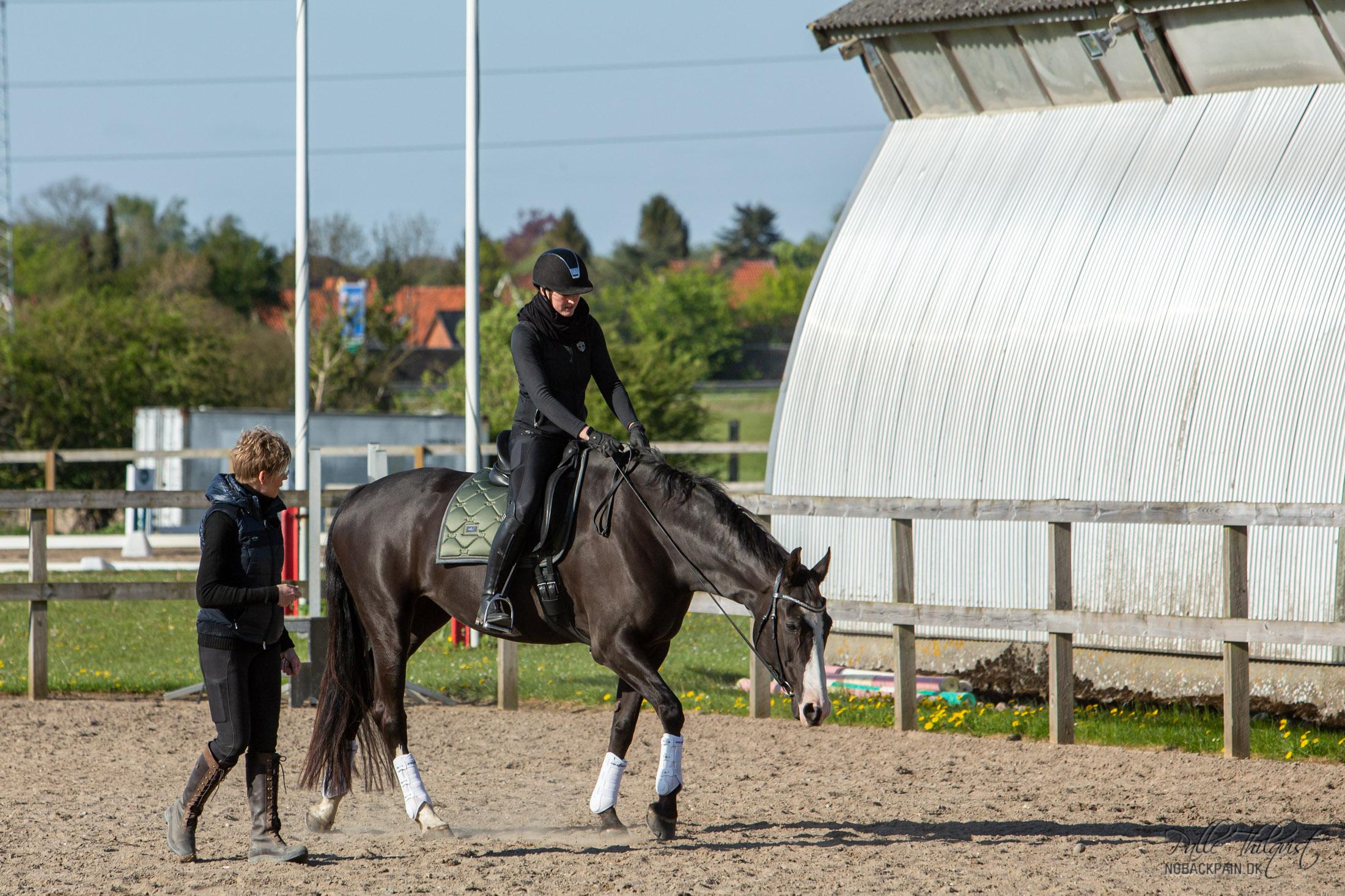 På en 20 meter volte, skal hesten nærmest være ligeudrettet. Der er altså ingen grund til at fokusere på bøjning her. I stedet bør man fokusere på at hesten holder hoved og hals i en lige position imellem forbenene.