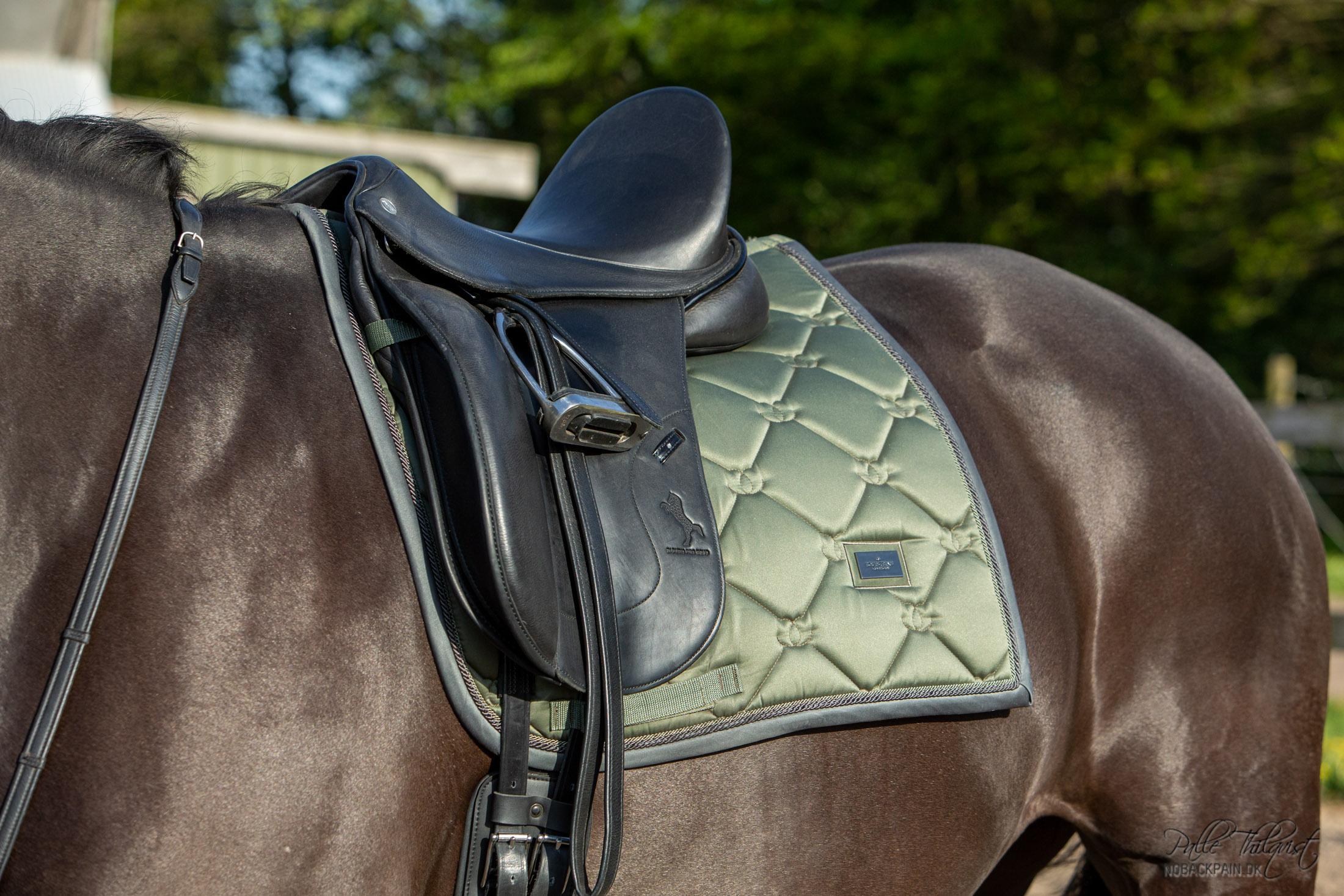 Morgenroth Premium sadlen har en bom der er lavet efter formen på Lappe's ryg og skuldre. Det er også muligt med denne sadel at lave bommen således at rytteren placeres i det rigtige balance punkt.